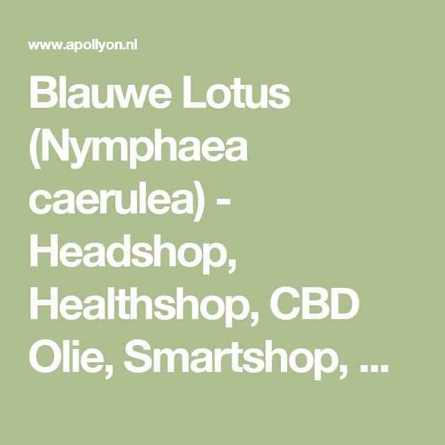 Blauwe Lotus (Nymphaea caerulea) - Headshop, Healthshop, CBD Olie, Smartshop, Seedshop