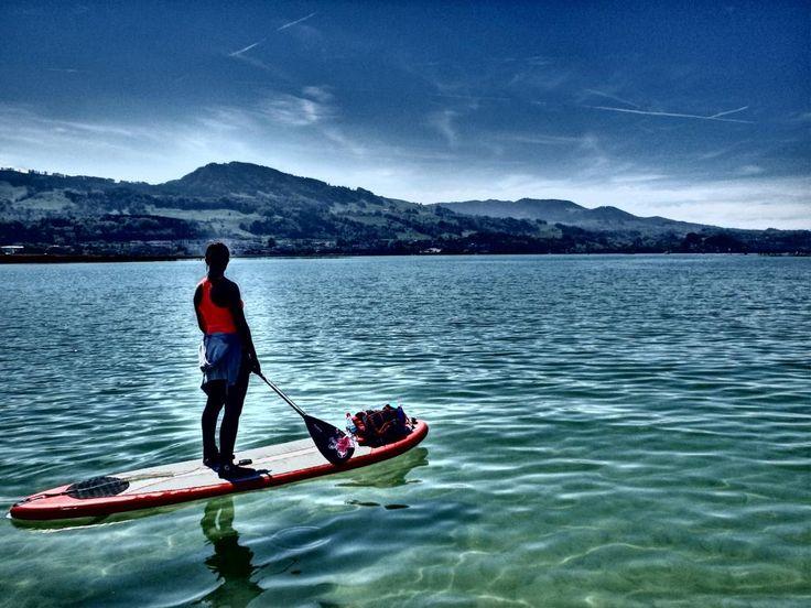 SUP Tour, Insel Lützelau und Ufenau