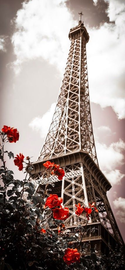 Eiffel Tower in spring
