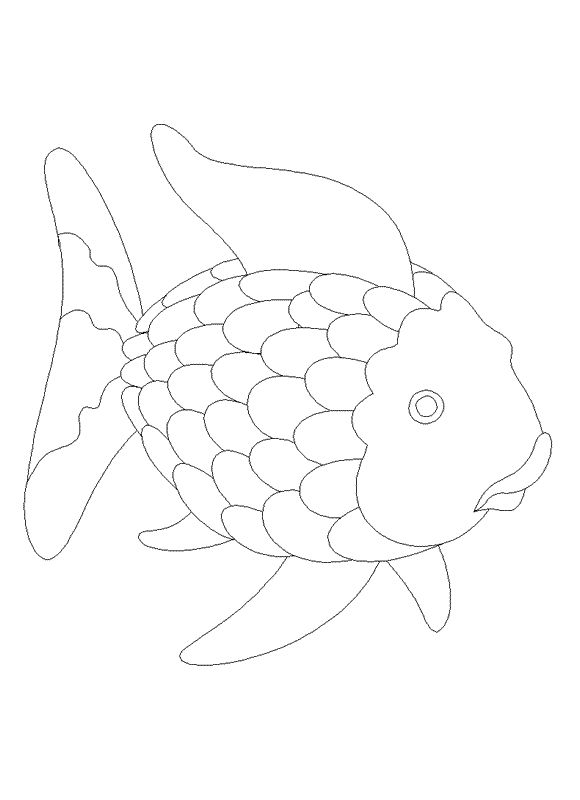 Rainbow Fish Coloring Pages Printable  Coloring Pages