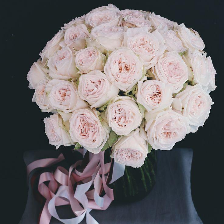 Шикарный букет из садовых роз White O`hara💎 На наш взгляд это самые душистые розы, они имеют насыщенный сладкий аромат, которым заполняют все пространство вокруг себя)  Букет из 11 роз с доставкой и упаковкой - 2500р. Букет из 23 роз с доставкой и упаковкой - 4200р. Букет из 35 роз с доставкой и упаковкой - 5500р. (как на фото)  Заказ лучше оформить по телефону заранее: +7 812 408 46 23 Или на сайте: 11роз -https://severnajastorona.ru/bukety/buket-iz-11-sadovyx-roz-white-o-hara 35роз…