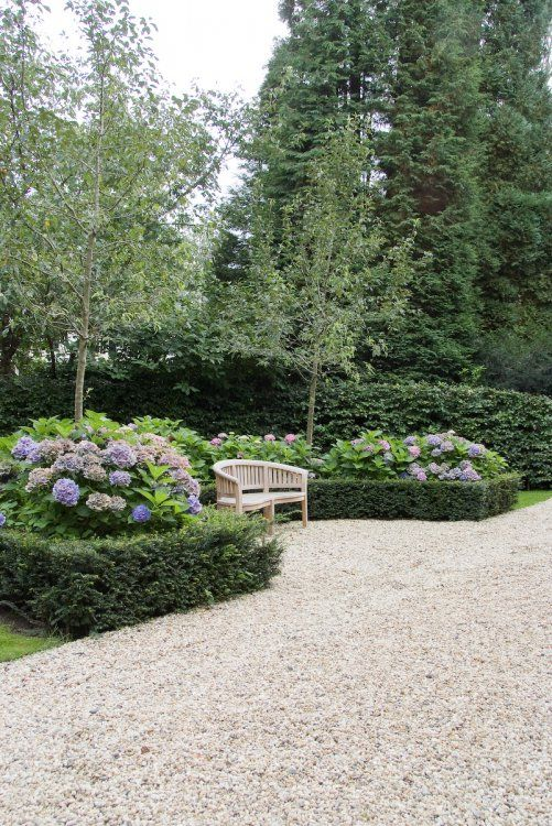 Boxwood type of hedge around a big flowering bush- love this look for either side of my driveway Garden - Robert Broekema