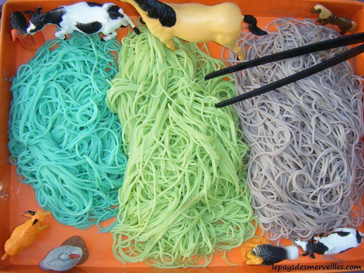 Activité sensorielle spaghettis colorés 130314 (18)