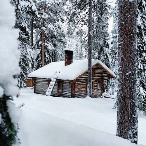 3531 best images about cabins n cottages on pinterest for Winter cabin plans
