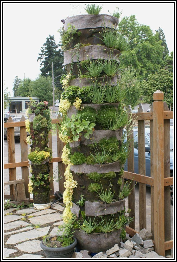 Вертикальное озеленение (113 фото): видео. Вертикальное озеленение в квартире, в офисе, в интерьере, сада, фасада дома. Зеленая архитектура.