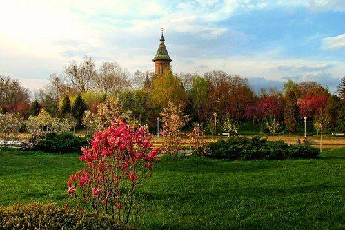 Spring in Timisoara, Romania.