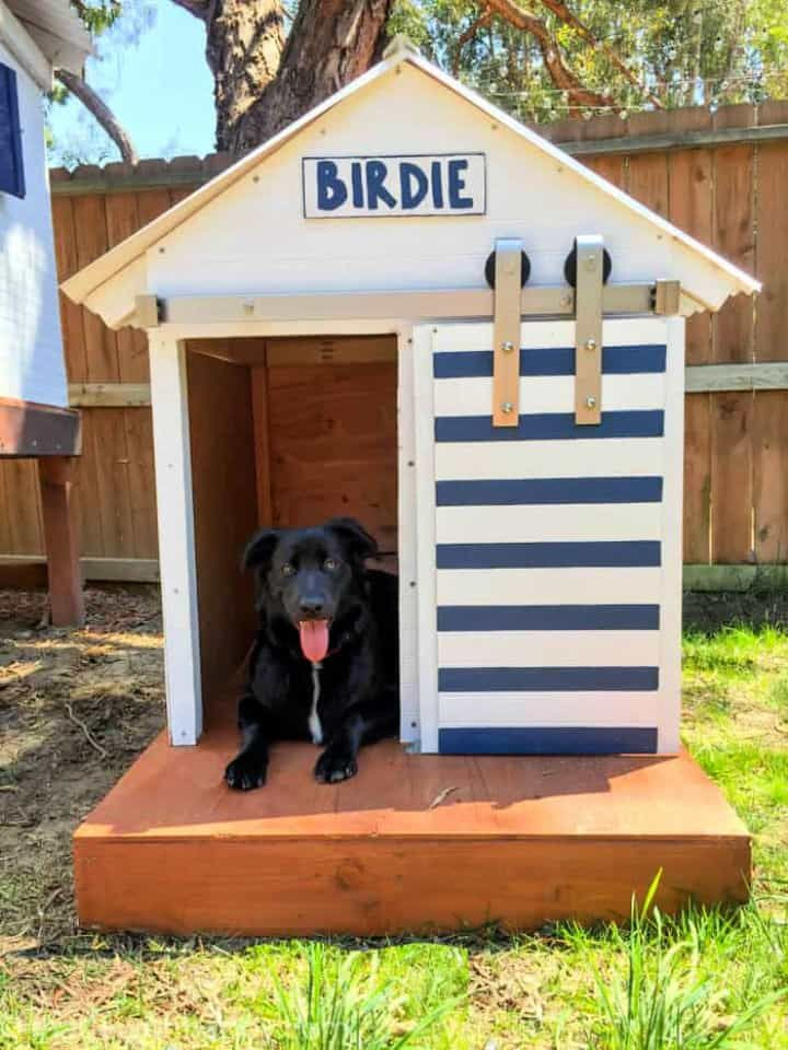 50 Free Diy Dog House Plans To Build A Dog House Cheaply In 2021 Large Dog House Dog House Diy Double Dog House
