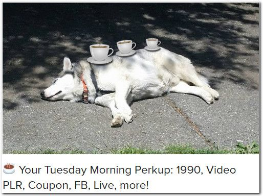 ☕ Your Tuesday Morning Perkup: 1990, Video PLR, Coupon, FB, Live, more!