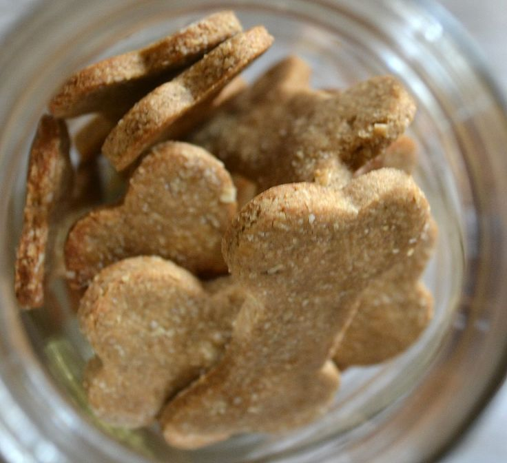 homemade dog treats using only three ingredients