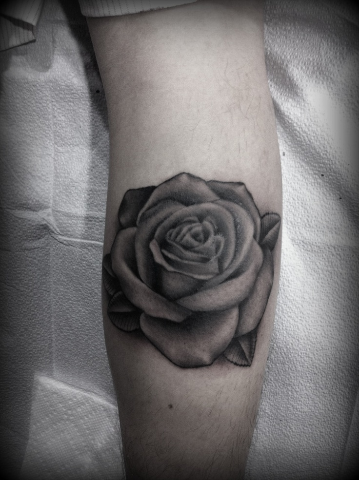 Black and grey rose do purple shades with grey leaves for Black and gray rose tattoos