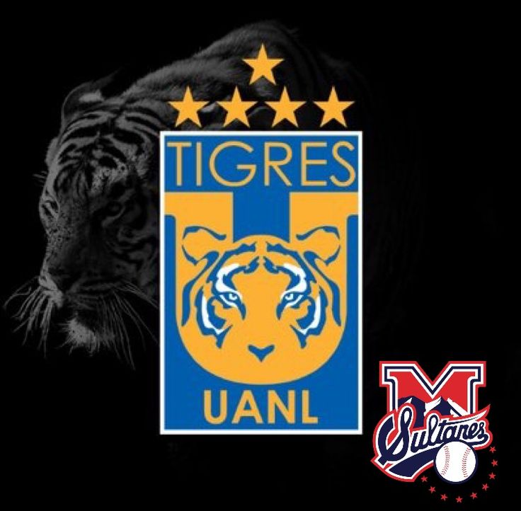 Club de Béisbol Monterrey felicita al Club Tigres por su campeonato en el apertura 2016 ¡FELICIDADES! @TigresOficial #TodosSomosSultanes