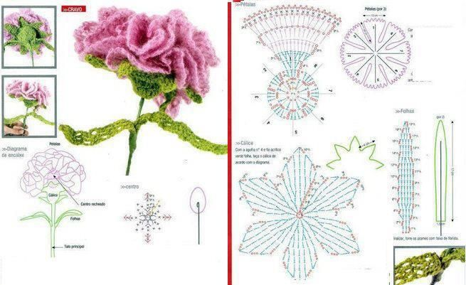 Patron Crochet Flor Clavel - Patrones Crochet