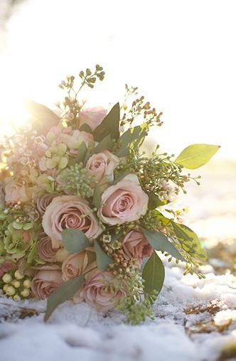 Pink antique rose bouquet - florist in volterra says they would be the same price as peonies.