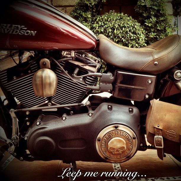 124 best harley-davidson motorcycle images on pinterest   harley