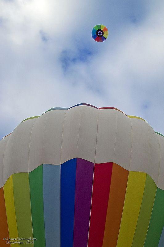 Balloons Over Waikato 2014 rainbows