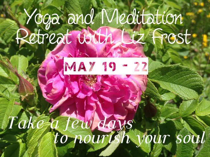 Yoga and Meditation Retreat with Liz Frost May 19 - 22, 2017