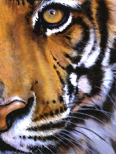 stunning life-like painting of a tiger