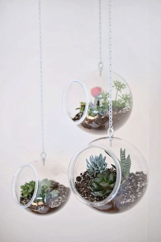 8 id es diy pour cr er un terrarium terrarium suspendu. Black Bedroom Furniture Sets. Home Design Ideas