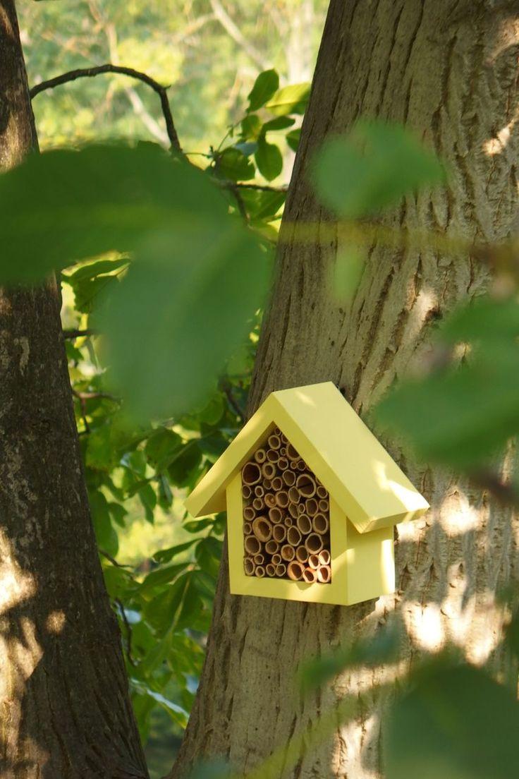 Hmyzí hotel Banana Nechte odpočinout i naše nejmenší zahradní pomocníky... Hmyzí hotely vytvářejí skrýše pro prospěšný hmyz na vaší zahradě, během léta i při přezimování. Nejčastější hosté jsou zlatoočky, včely samotářky, čmeláci, slunéčka sedmitečné... Tento drobný neagresivní hmyz pomáhá opylovat vaši zahradu a zvyšovat tak vaši úrodu.Slunéčko ...