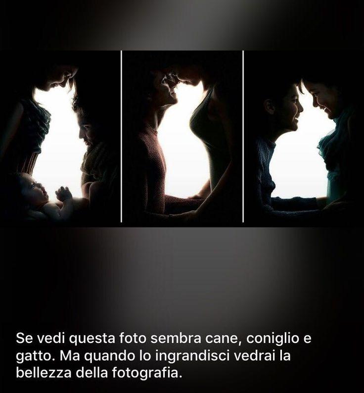 Guarda l'immagine..metafora tra apparenza e sostanza ..al primo sguardo vedi un cane un gatto e un coniglio..guarda bene e ingrandisci le parti in ombra...vdrai la gioia la tenerezza e l'amore...