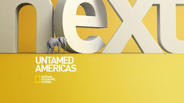 2011 - NatGeo Rebrand Internal Reel. Non-Commercial purposes.  National Geographic Channels International commissioned LUMBRE to create four new ID's  and…