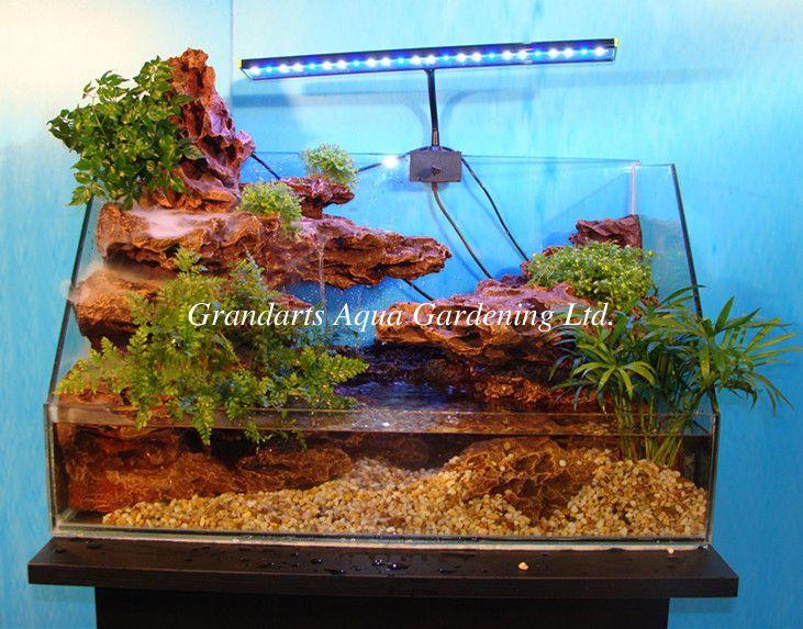 pl3500783-home_and_office_aquarium_landscaping_background_terrarium_landscaping_tank.jpg (731×573)