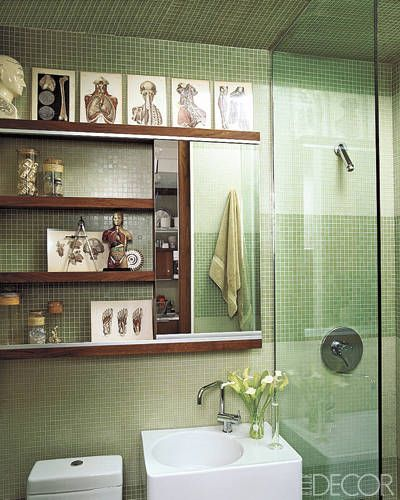 104 best images about science decor on pinterest dna for Quirky bathroom ideas