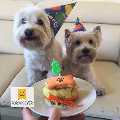 Cumpleaños para perros con Deliciosos Pasteles con Ingredientes Naturales y Artesanales. www.fordogever.com Pasteles para perros, envíos online. #Pasteles #Tartas