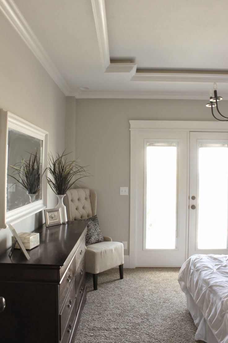 Bedroom.  Unique Tray Ceiling.  Sherwin Williams Repose Gray.