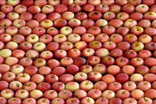 un mare di mele
