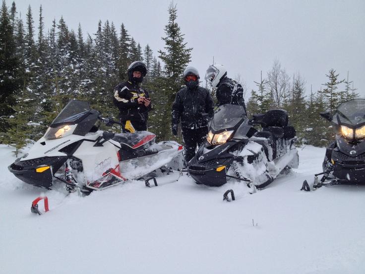De la neige vierge à perte de vue dans une nature sauvage.  Mais c'est qu'on s'amuse comme des enfants!