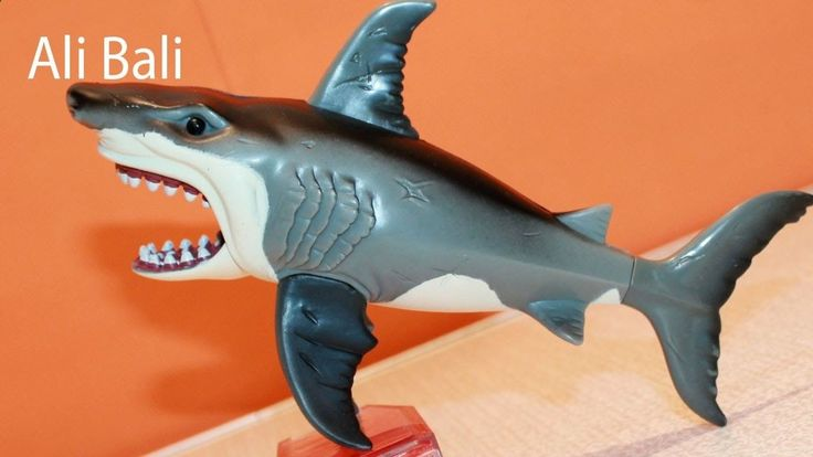 Pets Care - Pets Care - Happy Shark Toy Feeding Pet Shark The way cats and dogs eat is related to their animal behavior and their different domestication process. The way cats and dogs eat is related to their animal behavior and their different domestication process.