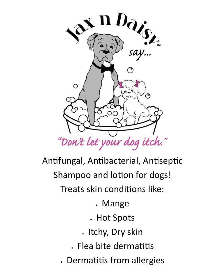 Jax n Daisy dog shampoo and dog lotion – Jax N Daisy, Inc.