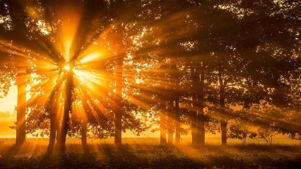 Warme Morgensonne im Herbst in Brandenburg. (Quelle: dpa)