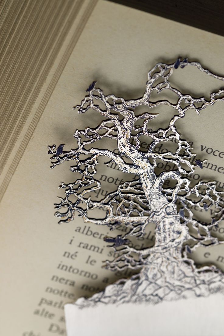 The visual play of the branches of this leafless tree is like embroidery, an intricate lace that as it lays on the pages of your book, will reveal the plot of the story you're reading. The lightness of the fretwork deserves to be jealously guarded among the pages of your favorite book.