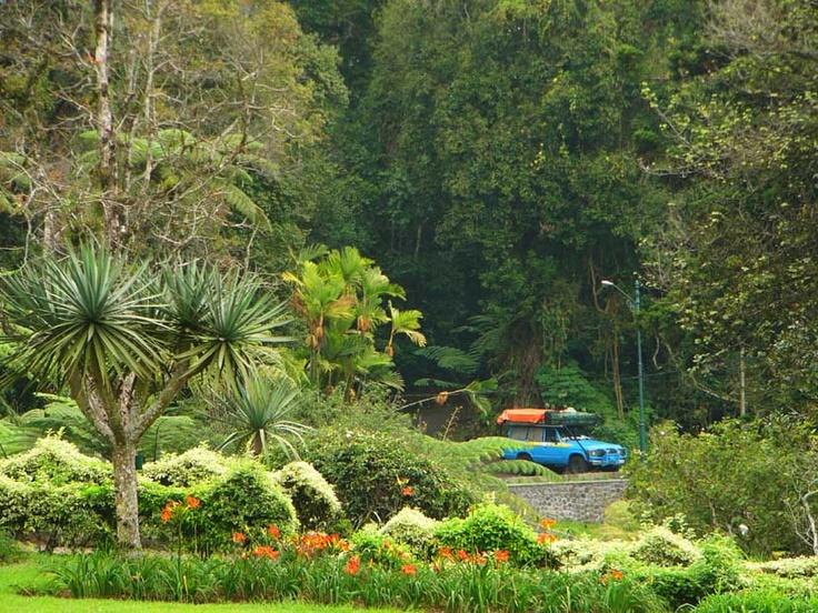 Botanical Garden, Bogor - West Java, I used to live next to it