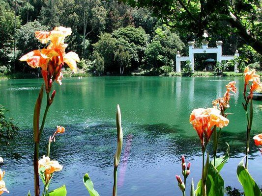 Lake Shrine - Malibu