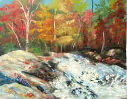 Splashing Brook by Rainer Pitsch