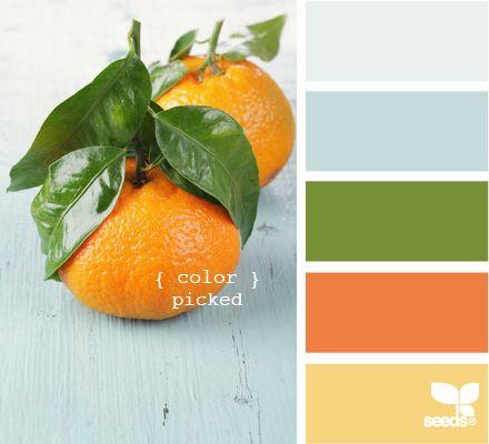 color picked via Design Seeds