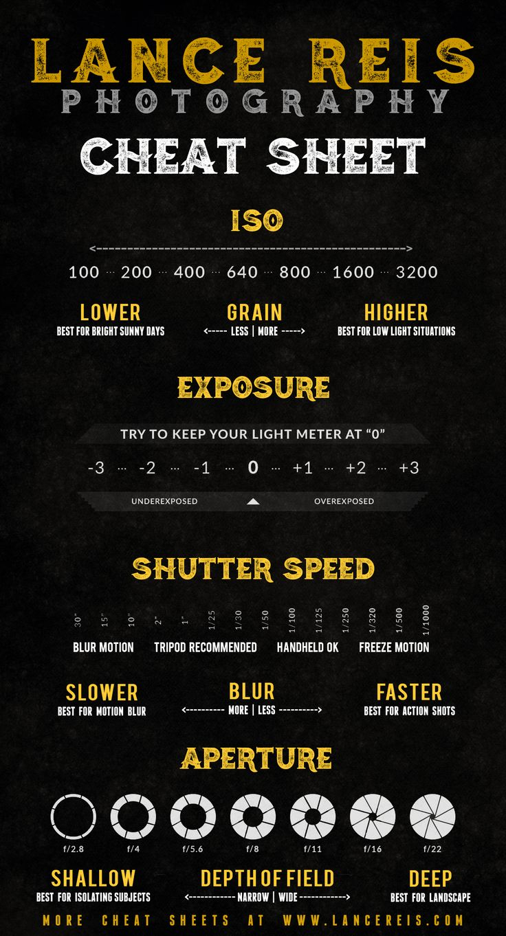Photography cheat sheet distracted driving infographic