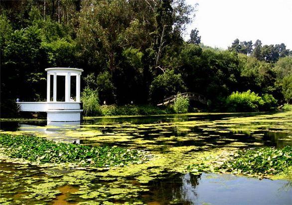 Botanical Garden, Viña del Mar  mail: info@minitrole.clcelular: +56 9 61531044 / +56 9 66293672 fanpage:https://www.facebook.com/mini.trole twitter: @MiniTrole_tours