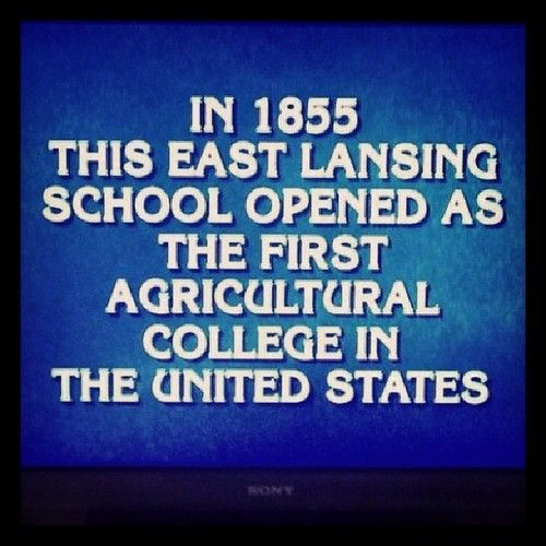 What is Michigan State? Tumblr