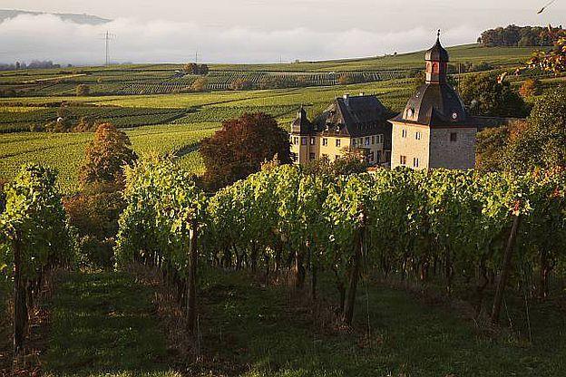 Weingut Schloss Vollrads, D-65375 Oestrich-Winkel, Rheingau-Taunus-Kreis, Hessen. © Weingut Schloss Vollrads