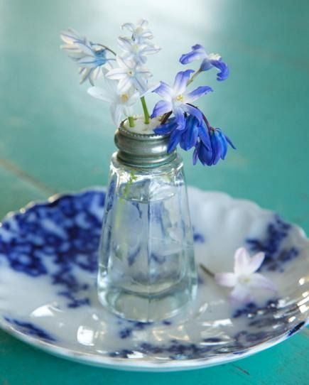 It doesn't get more charming than this. Use a salt or pepper shaker as a bud vase. Siberian squill stems are the perfect size to fit through holes in the cap. If stems don't fit, just skip the cap.