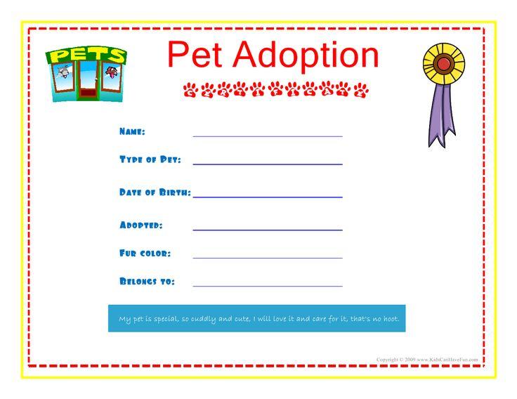 essay adoption pets Free essay: pet adoption many people have different thoughts on adoption such as why adoption is a good thing not only for the animal but also the owner, if.