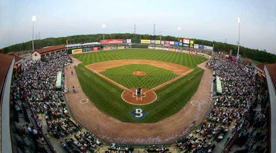 Southern Maryland Blue Crab Baseball 91