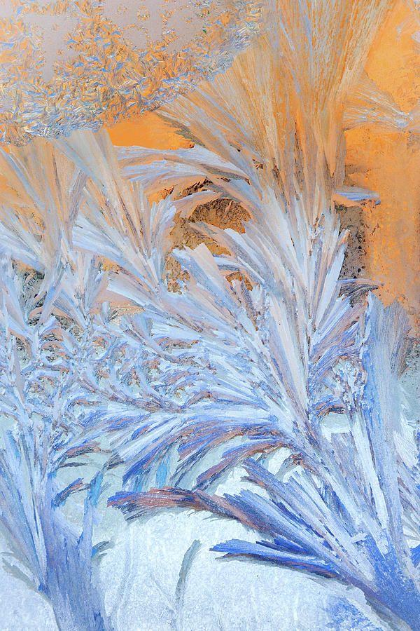 Frost Patterns On Window by Victor Kovchin