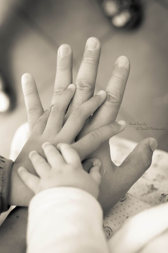 Hand Family [Explored] | Flickr - Photo Sharing!