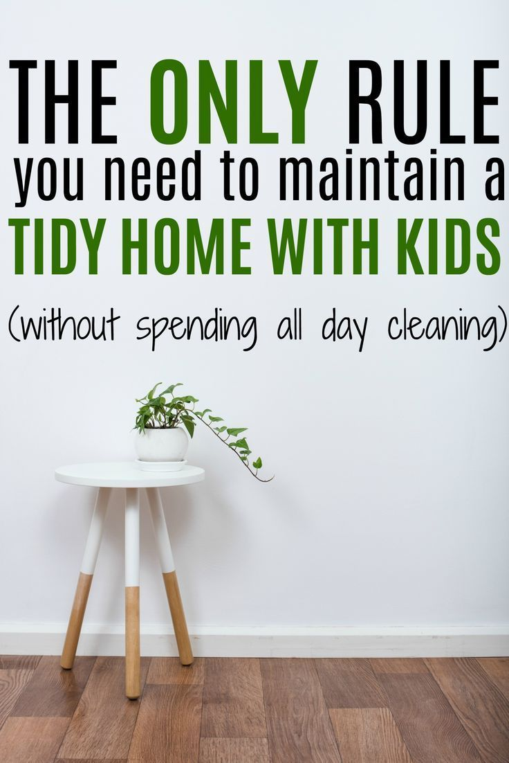 maintain a tidy home, keep house tidy, clean house with kids, clutter free, homekeeping tips, cleaning tips