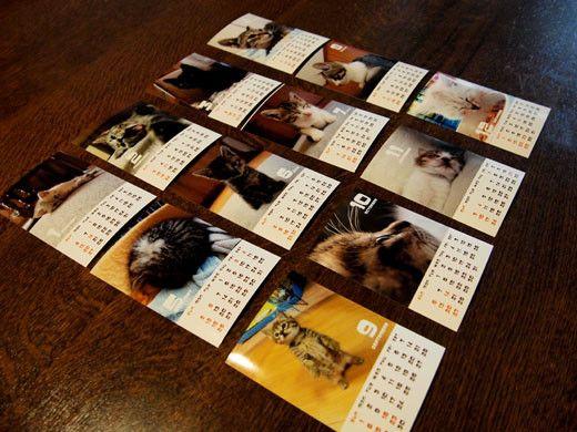 これまでボランティアで預かった子猫の写真カレンダーです。 L判写真サイズ(127mm×89mm) ケースなどは付いていません。 フォトフレームに入...|ハンドメイド、手作り、手仕事品の通販・販売・購入ならCreema。